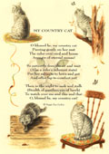 Country Rhymes poetry - My Country Cat