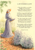 Country Rhymes poetry-  Lavender Lady