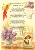 Country Rhymes poetry-  When the Lilacs Bloom Again