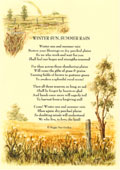 Country Rhymes poetry -  Winter Sun, Summer Rain